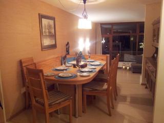 AMAZING APARTMENT IN AUSTRIAN ALPS - Bad Gastein vacation rentals