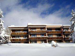 Albertihaus 5a - Davos Platz vacation rentals
