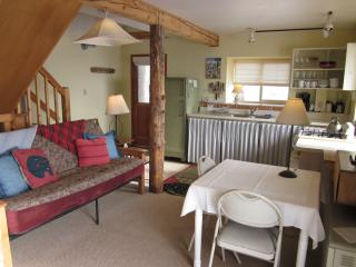 The Beetch House Retreat Cabin - Westcliffe vacation rentals