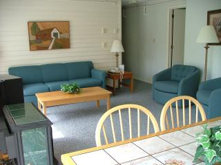 LAST MINUTE DEAL! Stowe Presidents' Week Unit B301 - Stowe Area vacation rentals
