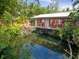 Lagoon Shangrila - Discover the Real Hawaii!! - Kailua-Kona vacation rentals