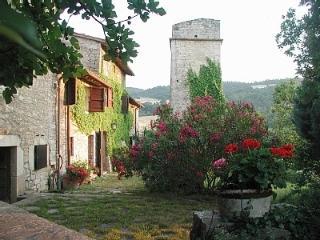 Lovely Farmhouse,Umbriatowerhouse  - Torre La Cupa - Amelia vacation rentals