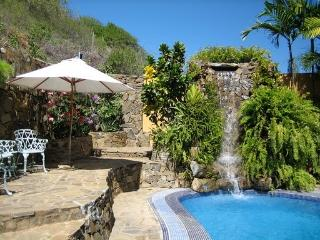 Exclusive House with Tropical Garden, Pool & more - Venezuela vacation rentals