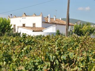 Mas Els Igols - Torrelles de Foix vacation rentals