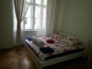 4 Bedrooms beautiful flat in attractive location - Prague vacation rentals