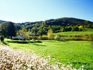 Au bord du lac - Chambéry vacation rentals