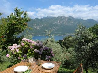 ANTICO ULIVETO Bellagio - Bellagio vacation rentals
