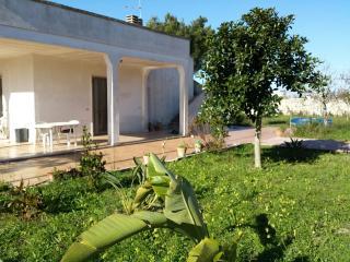 VILLA NEL SALENTO VICINO AL MARE - Torre Chianca vacation rentals