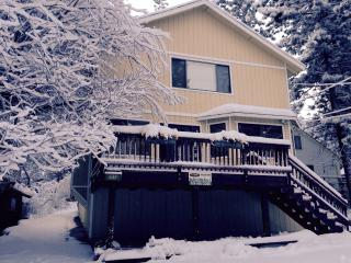 Group Getaway in Big Bear - Big Bear Area vacation rentals
