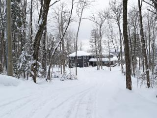 WATER FRONT MUSKOKA COTTAGE - Four Season Retreat - Dorset vacation rentals