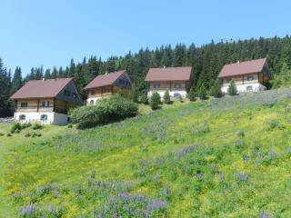 Almhütten Moselebauer - Bad Sankt Leonhard im Lavanttal vacation rentals