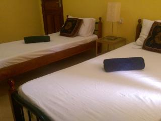 STONE TOWN Shared Apartment - Stone Town vacation rentals
