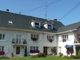 LES HIRONDELLES/LA KALISTE DE L'ILL - Oltingue vacation rentals
