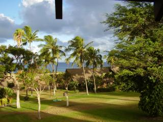 Molokai Oceanfront Studio With Car (extra) - Maunaloa vacation rentals