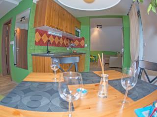 Apartments Helena*** new - app.no.5; mountain view - Kranjska Gora vacation rentals