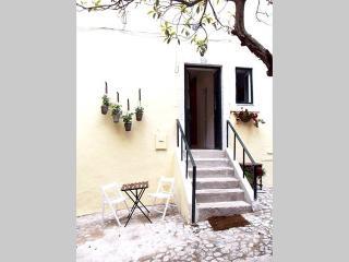 Casa das Olarias (5018/2014) Feel's like home! - Lisbon vacation rentals