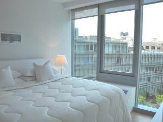 Ultimate Luxury Manhattan Apartment - New York City vacation rentals