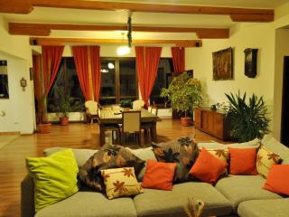 Spacious Cozy Villa, 15 minutes drive to Brasov - Transylvania vacation rentals