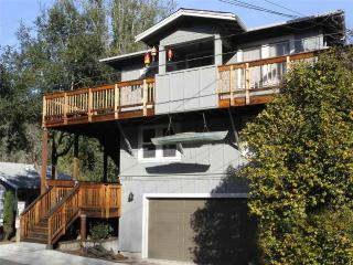 NORTHERN EXPOSURE - Guerneville vacation rentals