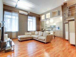 Elite Two Level Apartment Fontanka 50 - Saint Petersburg vacation rentals