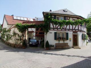 LLAG Luxury Vacation Apartment in Neu-Bamberg - 904 sqft, romantic, cozy, central (# 4864) - Rhineland-Palatinate vacation rentals