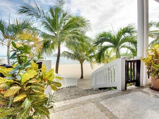 Serene suite in luxury resort w/ pool, spa, private beach - Placencia vacation rentals