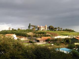 Big and luminous 4-room apartment - Vila Nova de Gaia vacation rentals