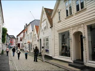 Bergen - City Center - 3 Bedroom - 70 m2 - Bergen vacation rentals