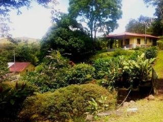 Lake Arenal Bungalow - Aguacate vacation rentals