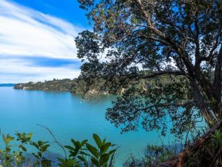 Auckland seaview clifftop - Auckland vacation rentals