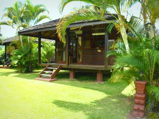 Fare Motu Tiare - Papara - Tahiti - Papara vacation rentals
