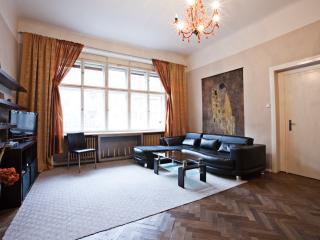 Spacious  Center 2 bed 1.5 bath - Prague vacation rentals