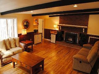 Cozy retreat with two homes, hot tub and pool!  5 Minutes from Ohiopyle! - Ohiopyle vacation rentals