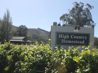 High Country Homestead - Bright vacation rentals