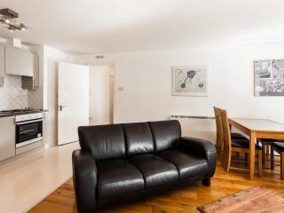 Tara Street Two Bedroom Apartment - Dublin vacation rentals