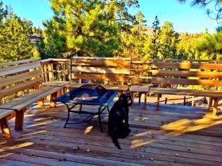 Beary Nice View Cabin - Big Bear Lake vacation rentals