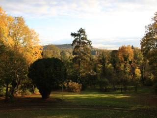 Villa du Châtelet - Choisy-au-Bac vacation rentals