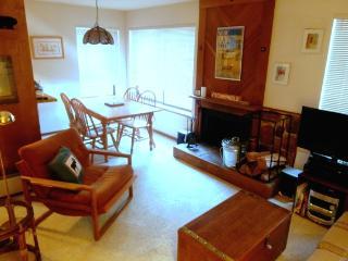 Tamarack Condo 7 - Bear Valley vacation rentals