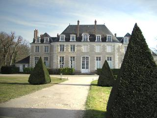 Castle Gouchet - Checy vacation rentals