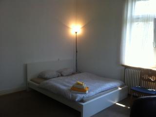 Room with a view l - Zurich Region vacation rentals