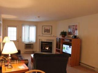 1BR condo with TV/DVD/VCR and King bed - A2 203A - Franconia vacation rentals