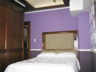New Lux. 2BR condo w. pools at Ayala Mall/Terraces - Cebu City vacation rentals