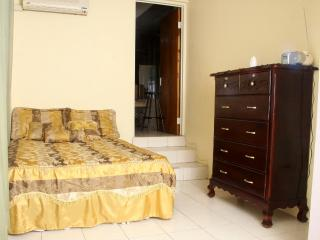 Safe Cozy Flat near Shops, Plazas, Fun, Bus - Kingston vacation rentals