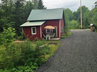 Adirondack Cottage- 10 Miles south of Old Forge - Forestport vacation rentals