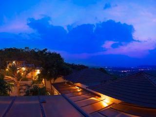 The Aranya Front villa Forest view - Villa A2 - Arpora vacation rentals