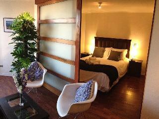 Apt. in Bellas Artes - Best Location - Santiago vacation rentals