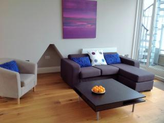 4 stops to Covent Garden. Modern Penthouse - London vacation rentals