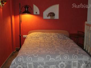 Vilnius Studio Apartments - Vilnius vacation rentals