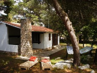 Pine Villa - Northern Dalmatia vacation rentals