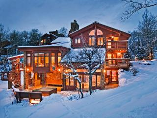 Trails Edge Lodge - Steamboat Springs vacation rentals